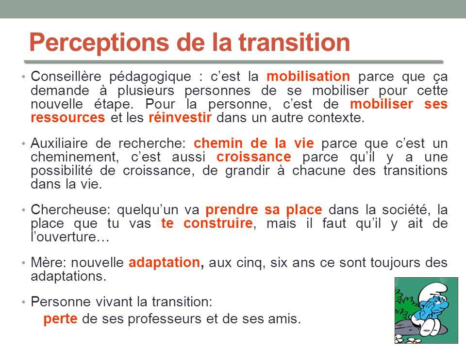 Perceptions de la transition