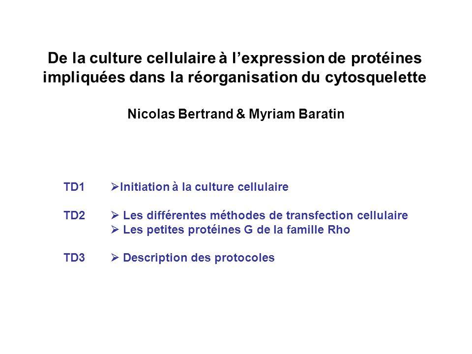 Nicolas Bertrand & Myriam Baratin