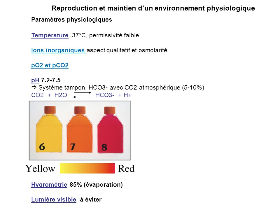 Reproduction et maintien d'un environnement physiologique