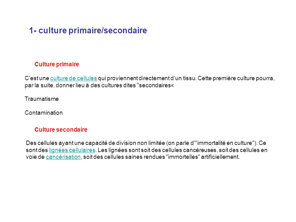 1- culture primaire/secondaire