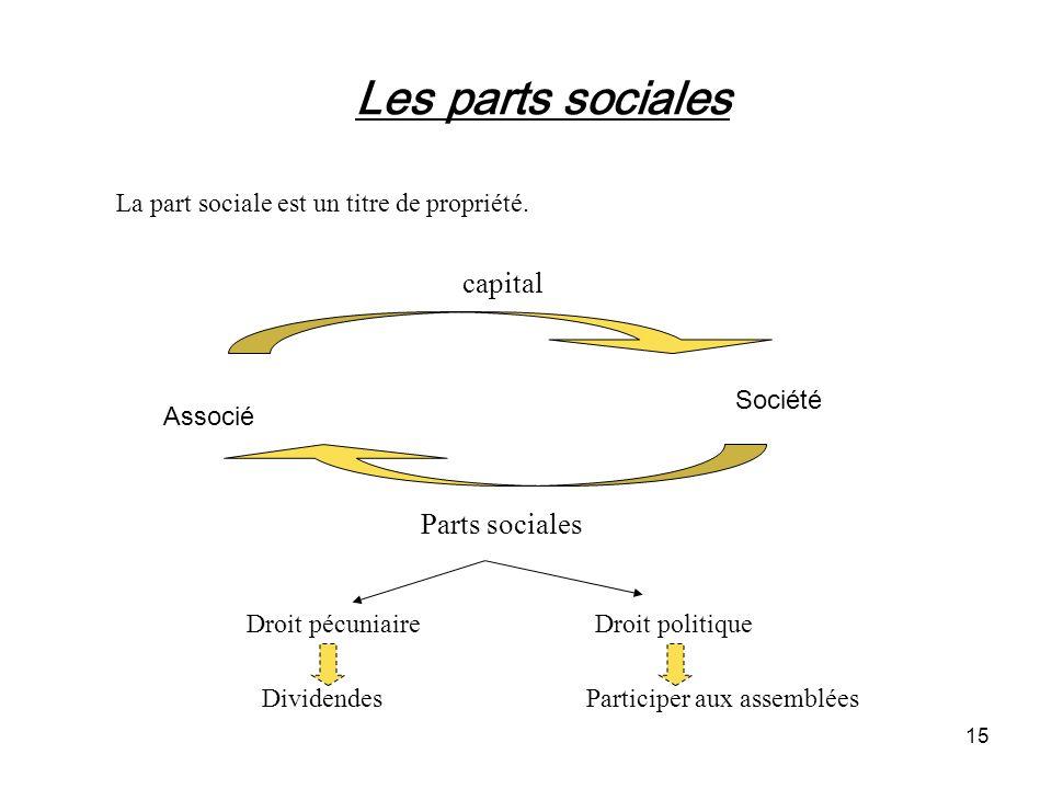 Les parts sociales capital Parts sociales