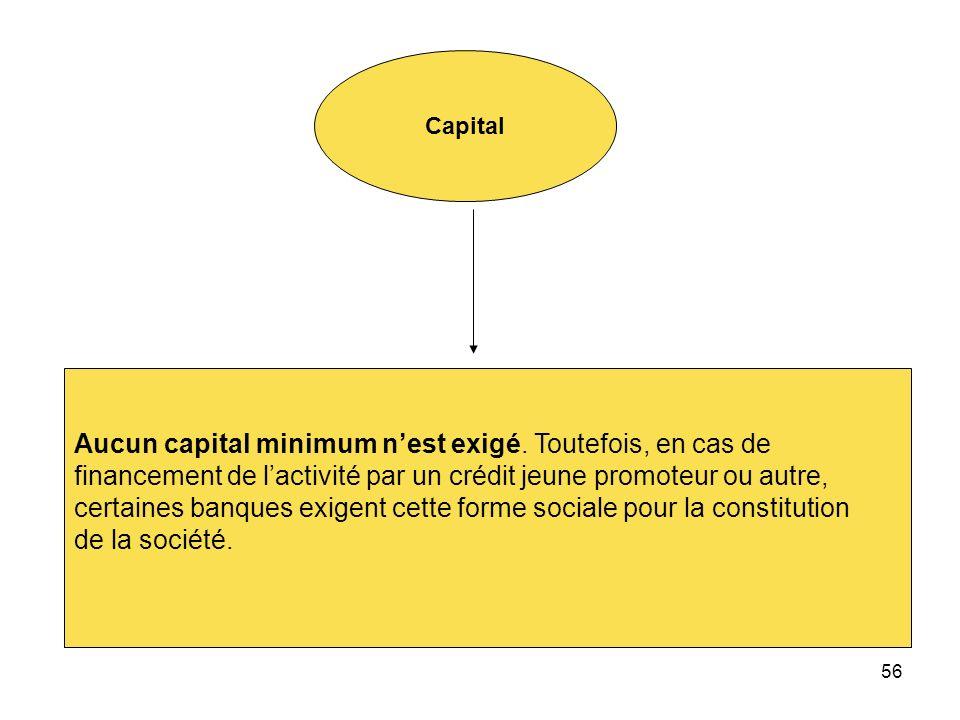 Aucun capital minimum n'est exigé. Toutefois, en cas de