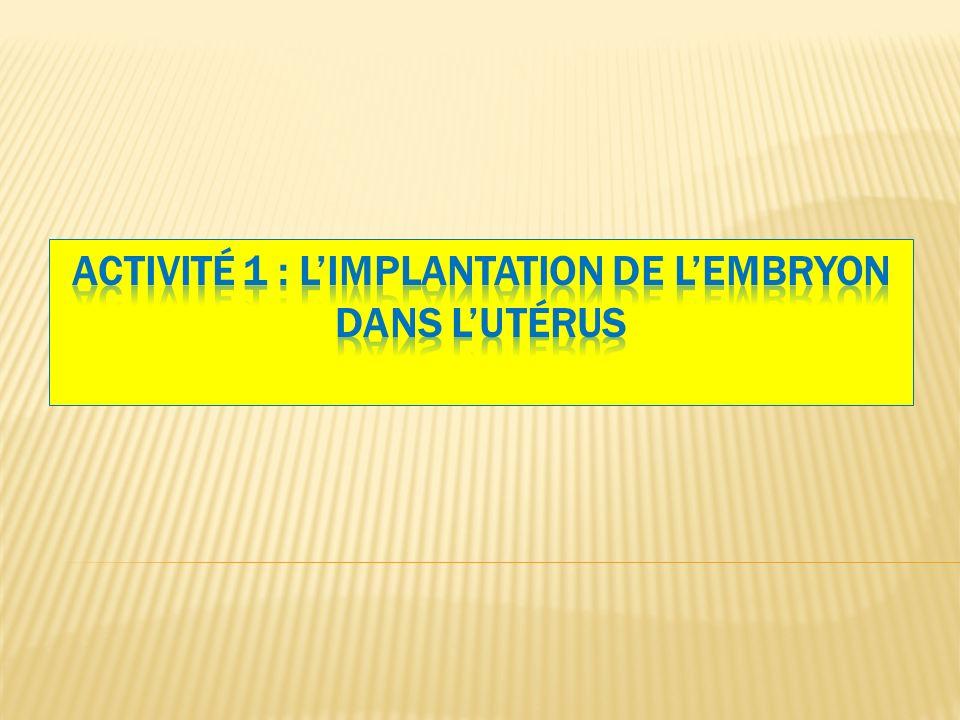 Activité 1 : L'implantation de l'embryon dans l'utérus