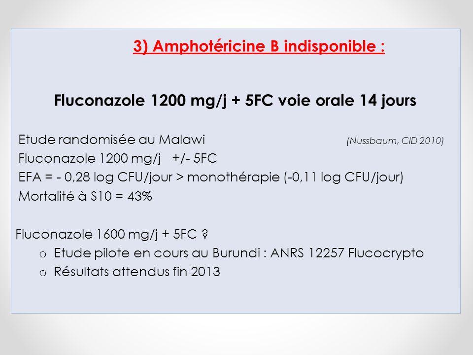 3) Amphotéricine B indisponible :