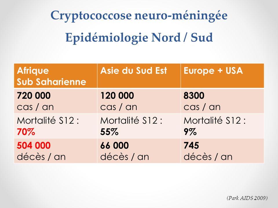 Cryptococcose neuro-méningée Epidémiologie Nord / Sud