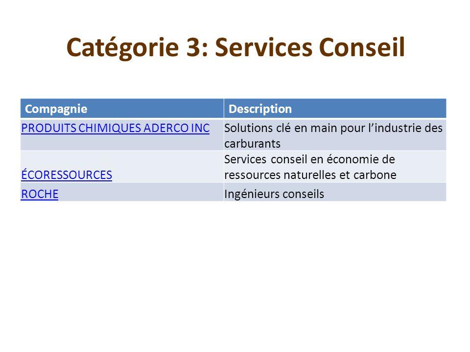 Catégorie 3: Services Conseil