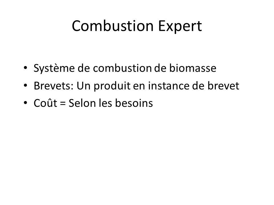 Combustion Expert Système de combustion de biomasse
