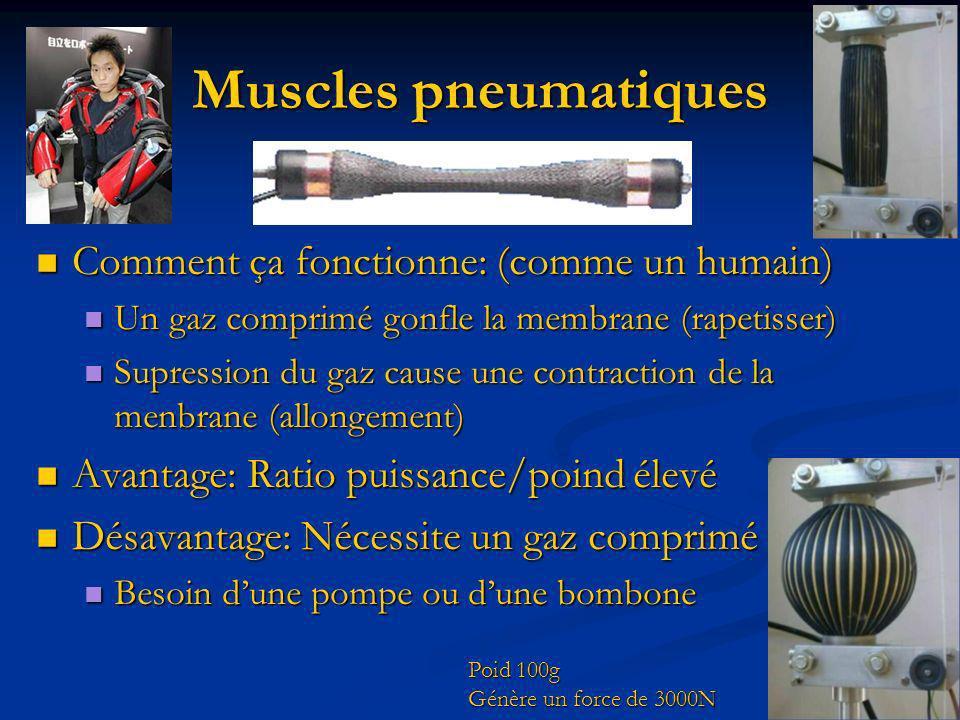 Muscles pneumatiques Comment ça fonctionne: (comme un humain)