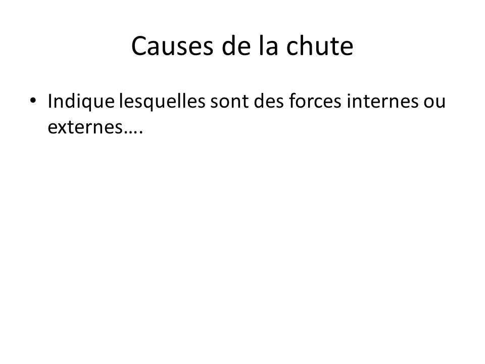 Causes de la chute Indique lesquelles sont des forces internes ou externes….
