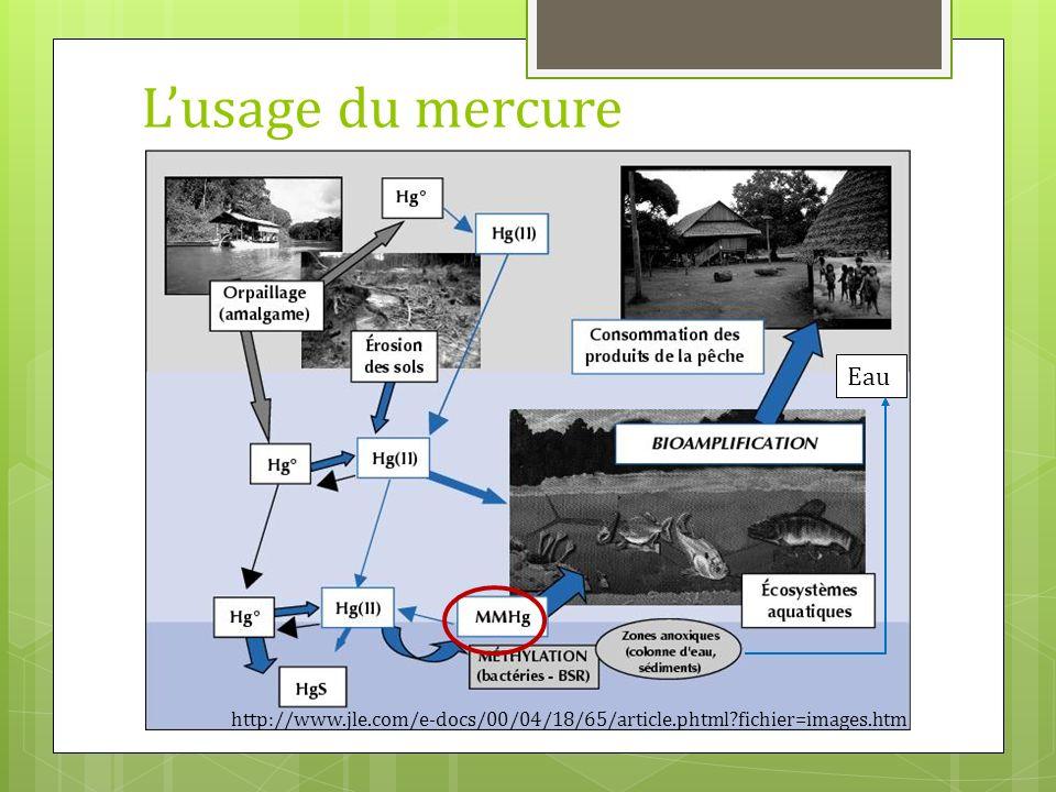 L'usage du mercure Eau http://www.jle.com/e-docs/00/04/18/65/article.phtml fichier=images.htm