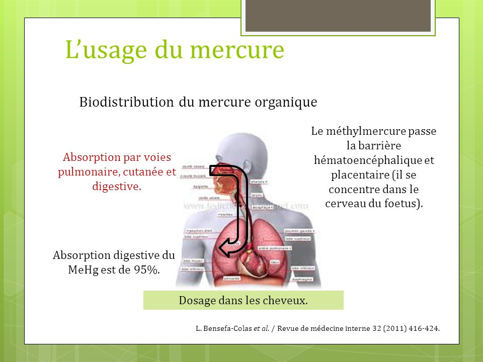 L'usage du mercure Biodistribution du mercure organique