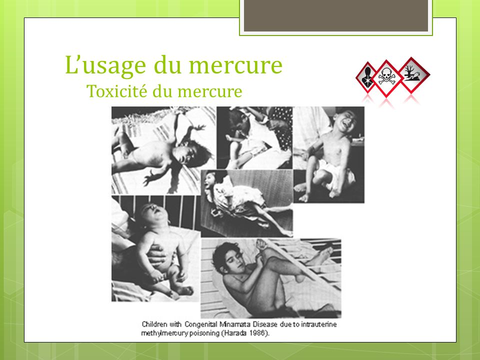 L'usage du mercure Toxicité du mercure 20 mg/g