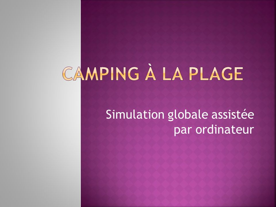 Simulation globale assistée par ordinateur