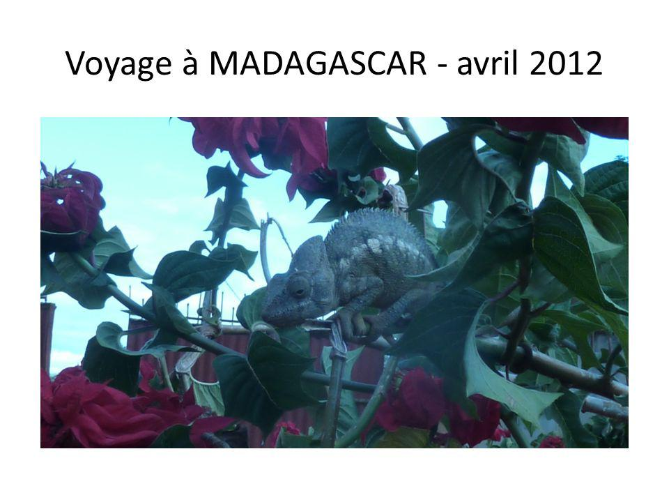 Voyage à MADAGASCAR - avril 2012