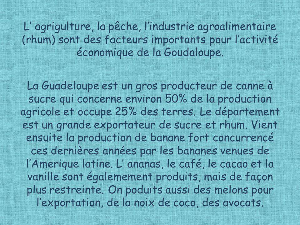 L' agrigulture, la pêche, l'industrie agroalimentaire (rhum) sont des facteurs importants pour l'activité économique de la Goudaloupe.