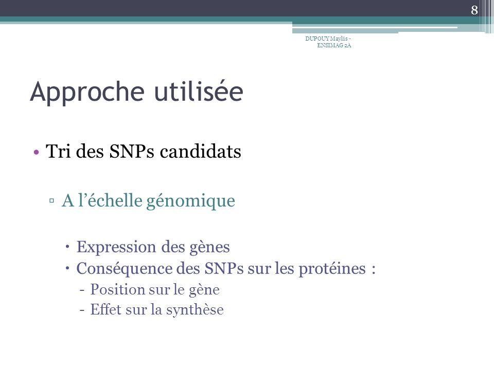 Approche utilisée Tri des SNPs candidats A l'échelle génomique