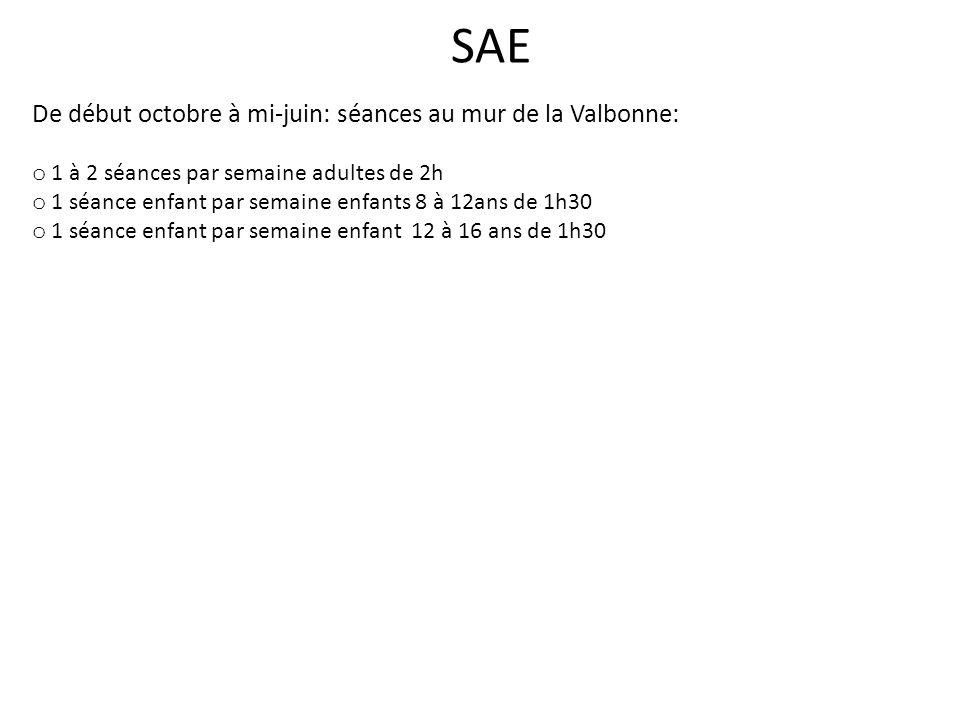 SAE De début octobre à mi-juin: séances au mur de la Valbonne: