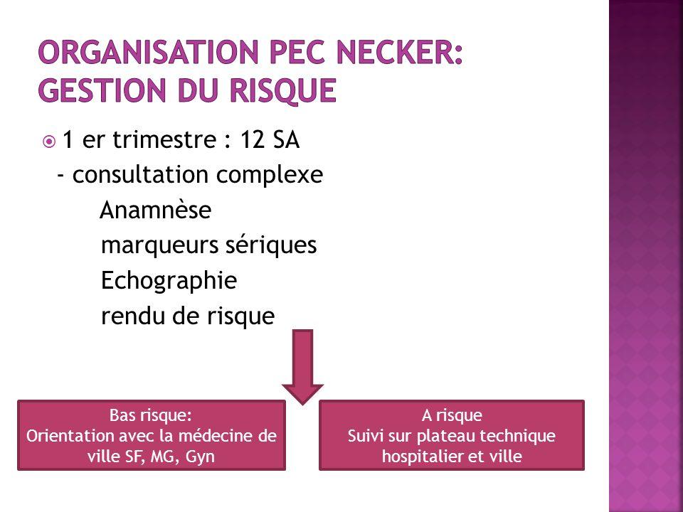 Organisation PEC Necker: gestion du risque