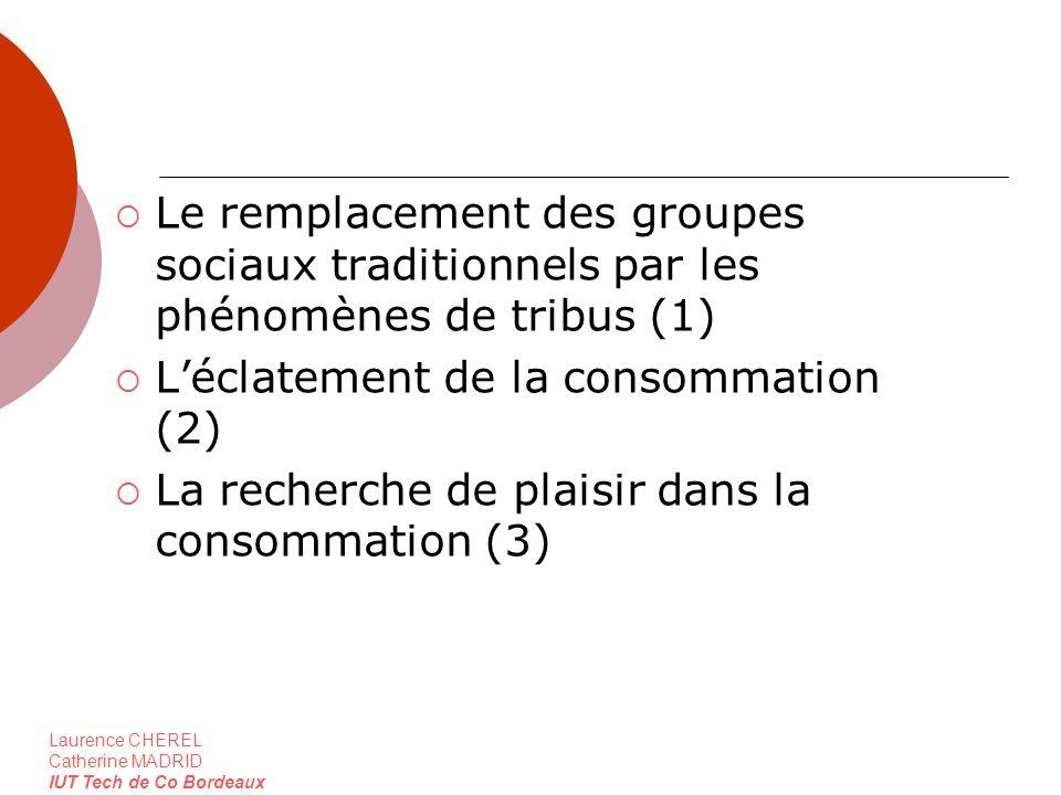 Le remplacement des groupes sociaux traditionnels par les phénomènes de tribus (1)