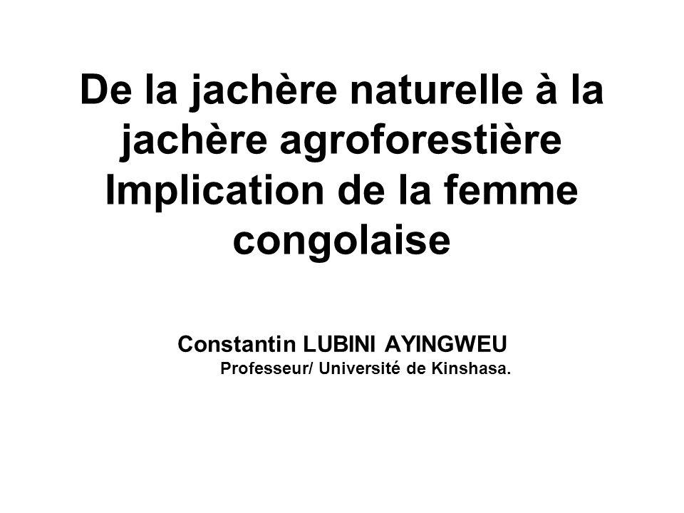 Constantin LUBINI AYINGWEU Professeur/ Université de Kinshasa.