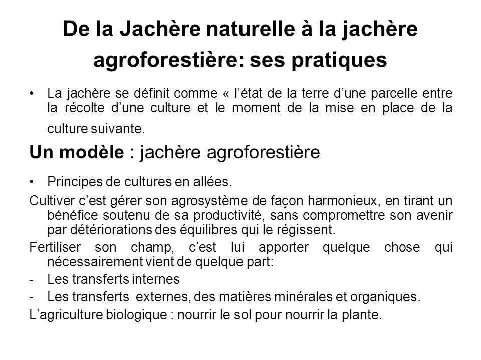 De la Jachère naturelle à la jachère agroforestière: ses pratiques