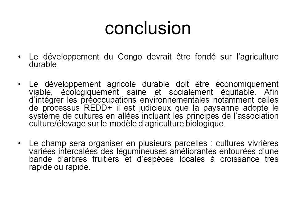 conclusion Le développement du Congo devrait être fondé sur l'agriculture durable.