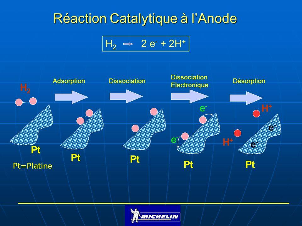 Réaction Catalytique à l'Anode