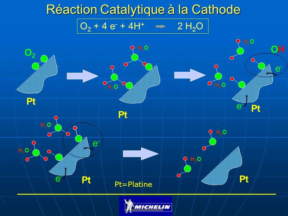 Réaction Catalytique à la Cathode