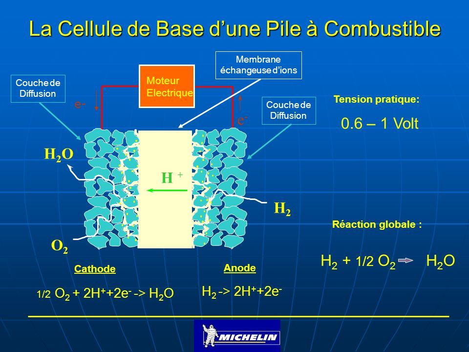 La Cellule de Base d'une Pile à Combustible