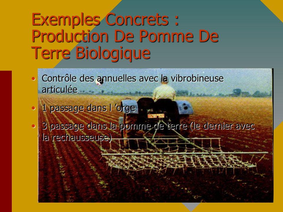 Exemples Concrets : Production De Pomme De Terre Biologique