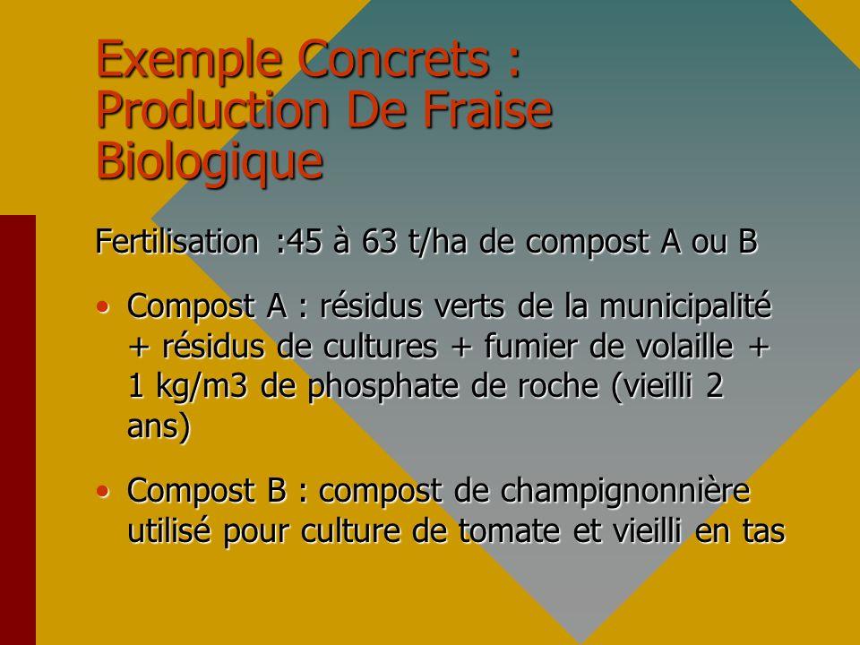 Exemple Concrets : Production De Fraise Biologique