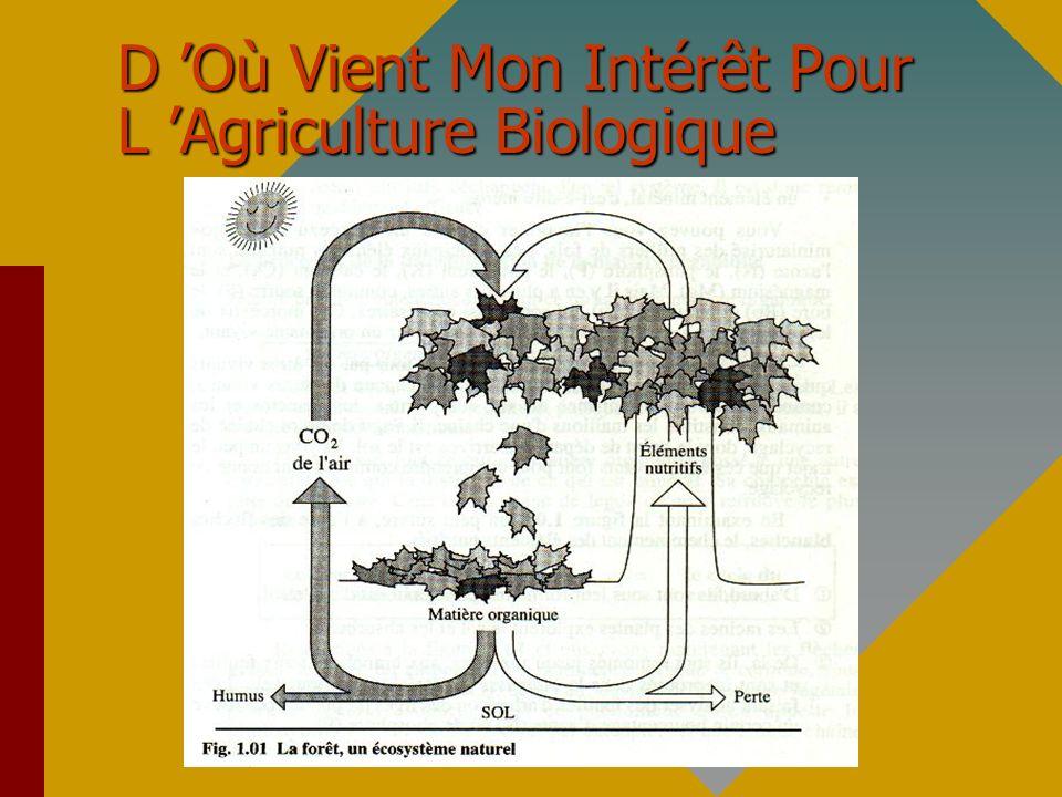 D 'Où Vient Mon Intérêt Pour L 'Agriculture Biologique
