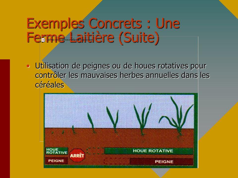 Exemples Concrets : Une Ferme Laitière (Suite)