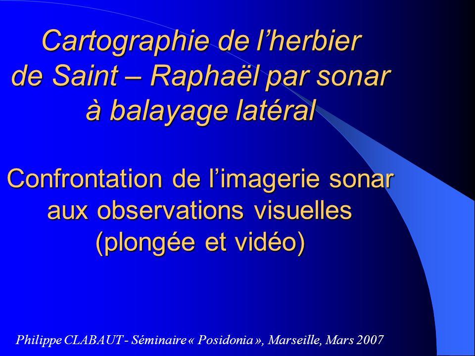 Cartographie de l'herbier de Saint – Raphaël par sonar à balayage latéral Confrontation de l'imagerie sonar aux observations visuelles (plongée et vidéo)