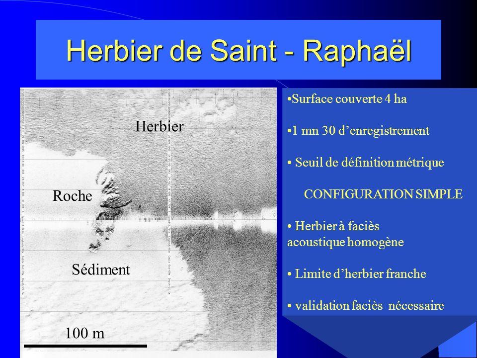 Herbier de Saint - Raphaël