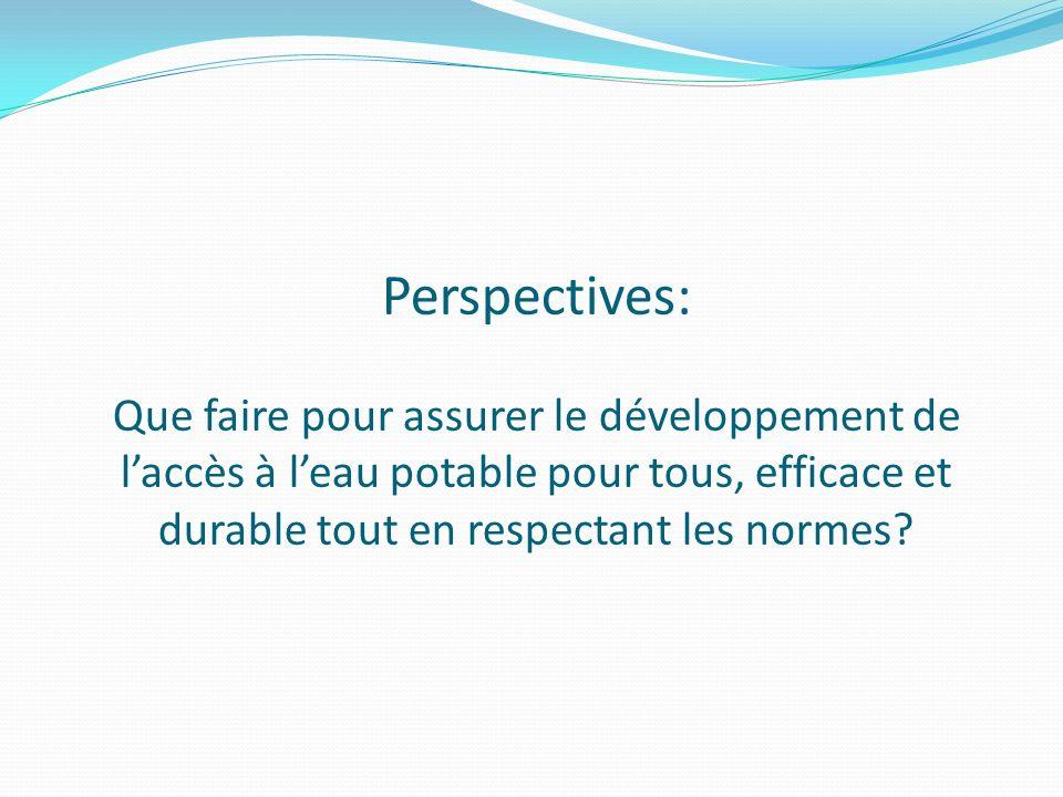 Perspectives: Que faire pour assurer le développement de l'accès à l'eau potable pour tous, efficace et durable tout en respectant les normes