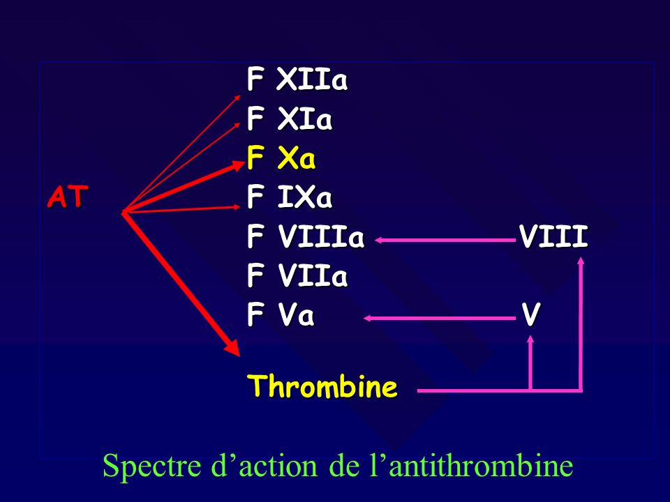 Spectre d'action de l'antithrombine