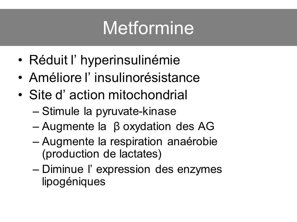 Metformine Réduit l' hyperinsulinémie Améliore l' insulinorésistance