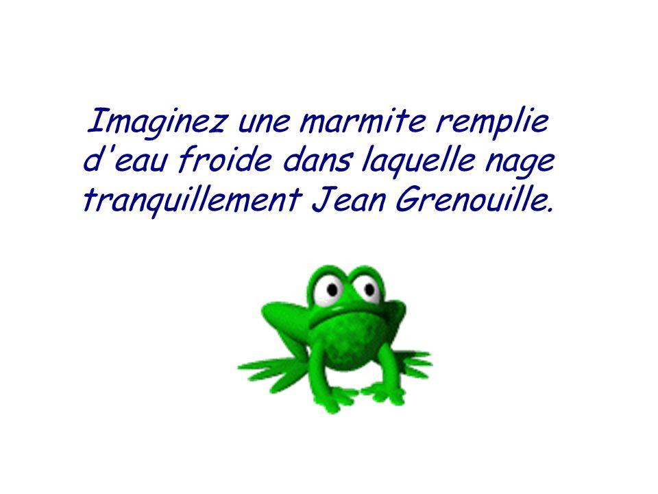 Imaginez une marmite remplie d eau froide dans laquelle nage tranquillement Jean Grenouille.