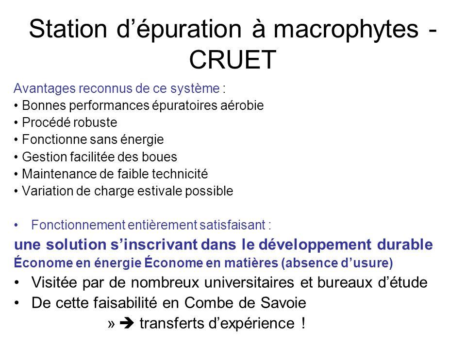 Station d'épuration à macrophytes - CRUET