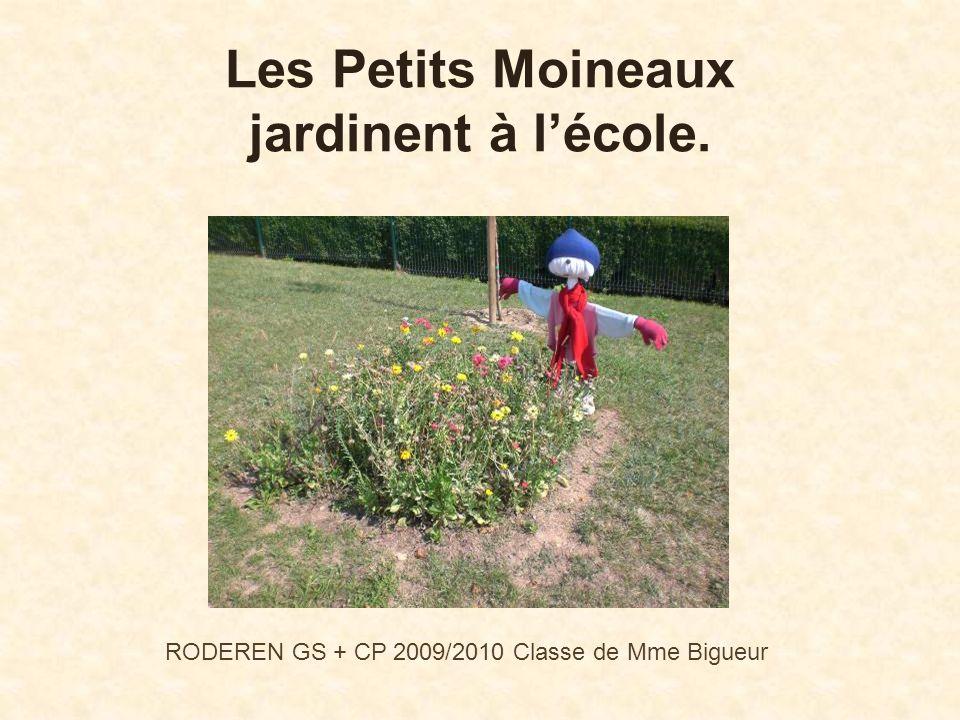 Les Petits Moineaux jardinent à l'école.