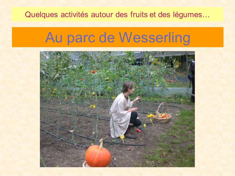 Quelques activités autour des fruits et des légumes…