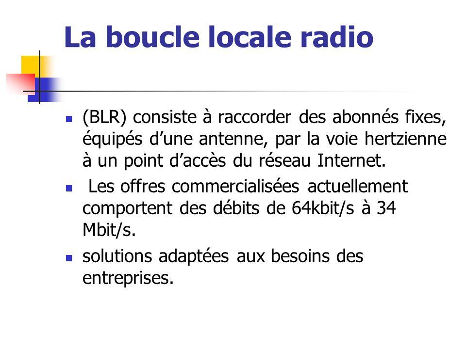 La boucle locale radio