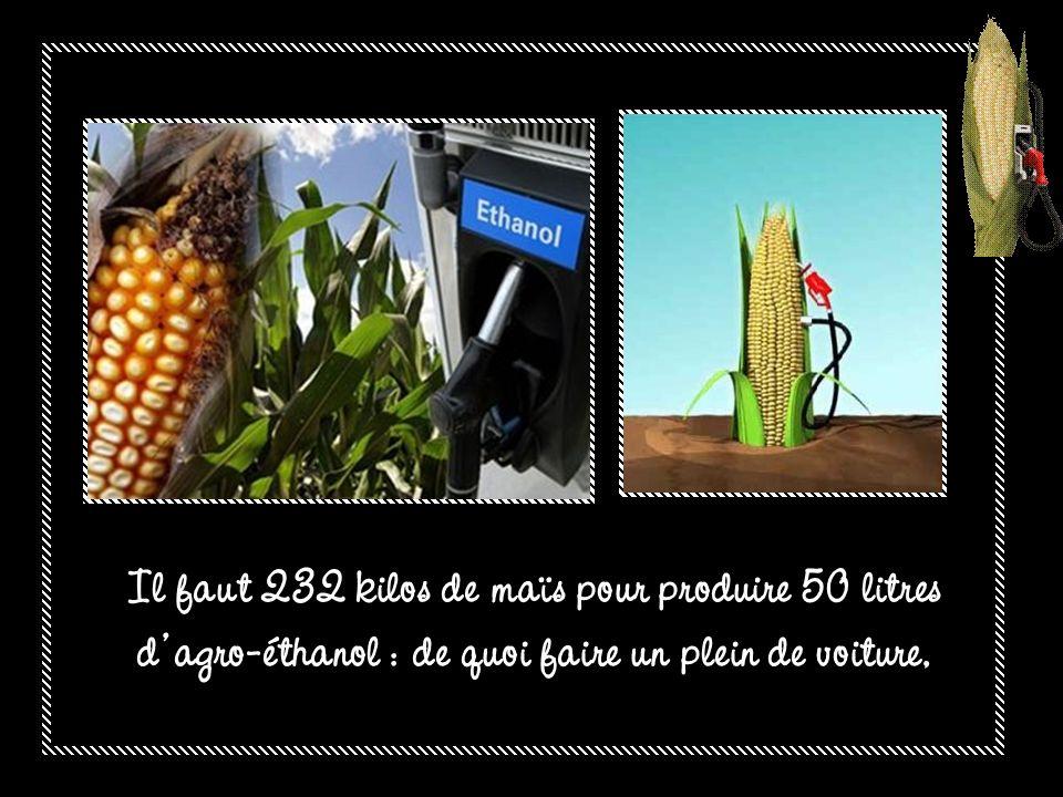 Il faut 232 kilos de maïs pour produire 50 litres d agro-éthanol : de quoi faire un plein de voiture,