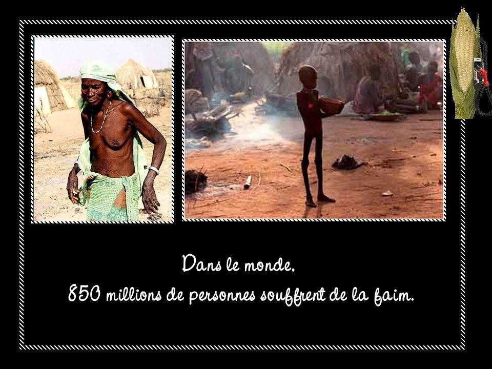 850 millions de personnes souffrent de la faim.