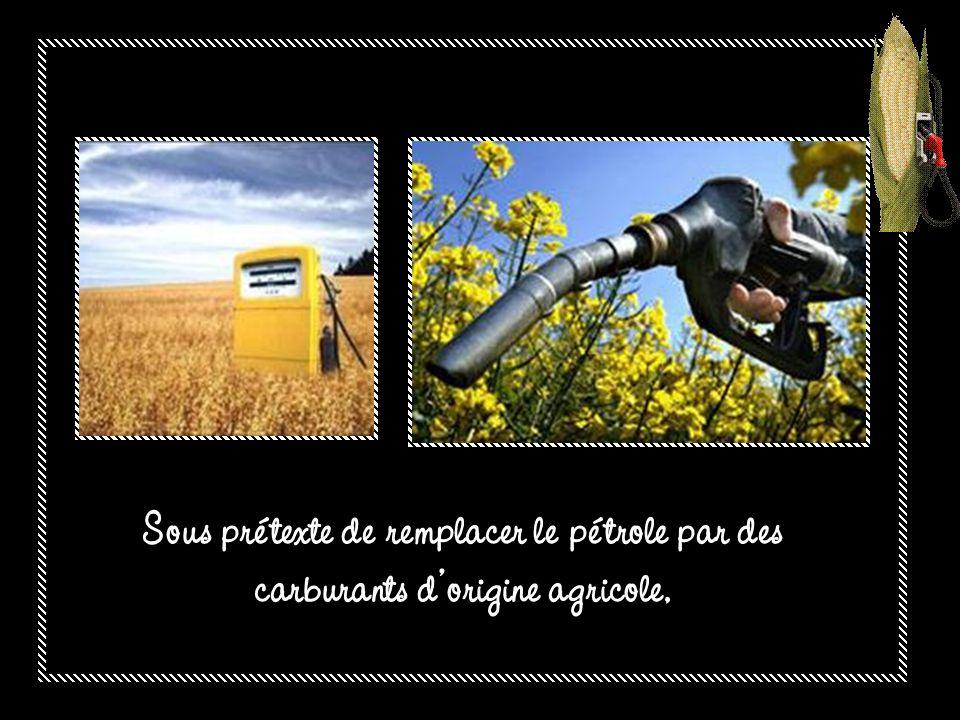 Sous prétexte de remplacer le pétrole par des carburants d'origine agricole,