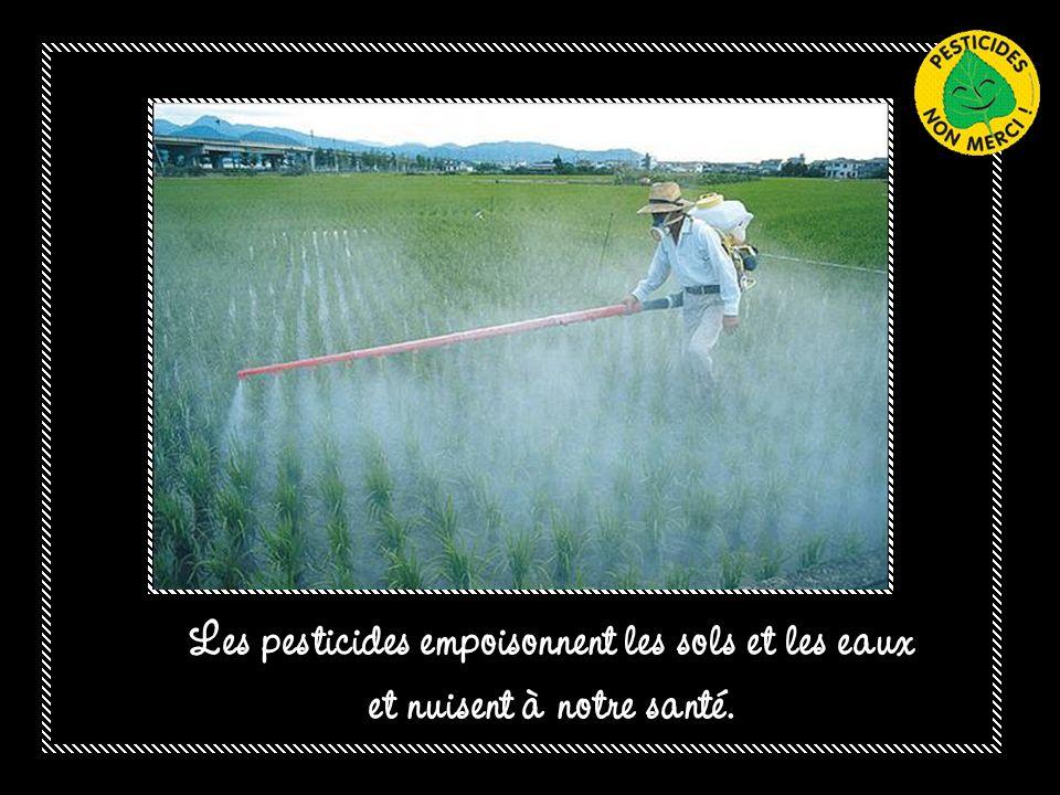 Les pesticides empoisonnent les sols et les eaux