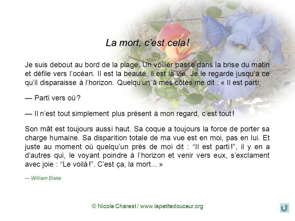 © Nicole Charest / www.lapetitedouceur.org