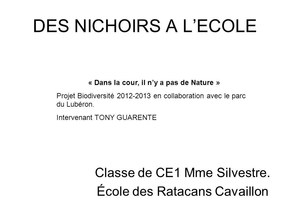 Classe de CE1 Mme Silvestre. École des Ratacans Cavaillon