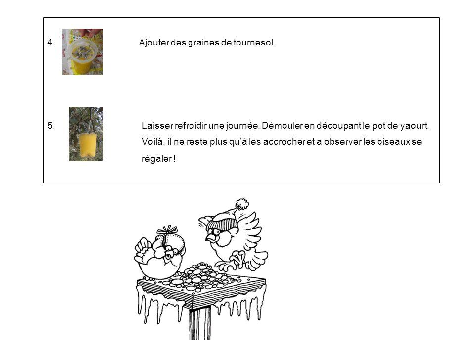4. Ajouter des graines de tournesol.